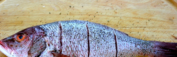 red snapper, cleaned and scaled, with slits
