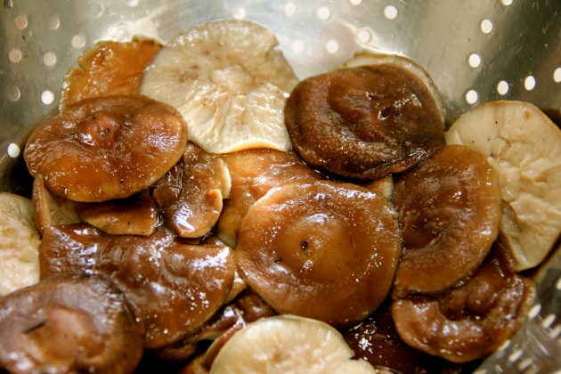 Blanched Shiitake are now drained and waiting for marinade
