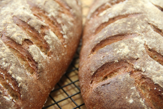 47% Rye Bread from Wild Yeast Blog