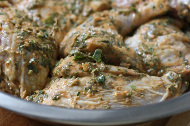 Chicken resting in yogurt marinade