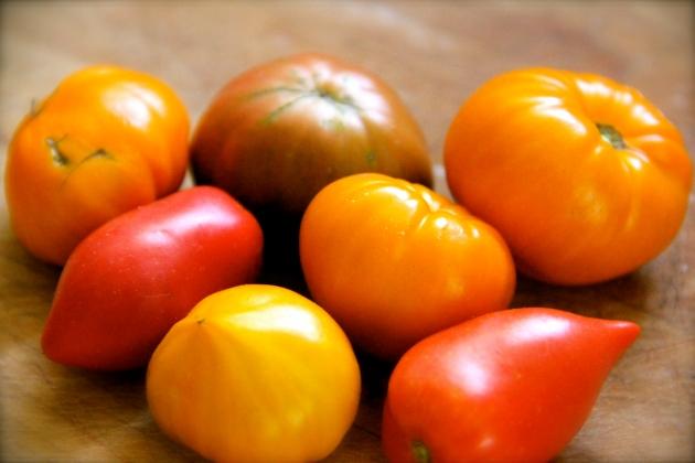 Fresh ripe tomatoes from my garden