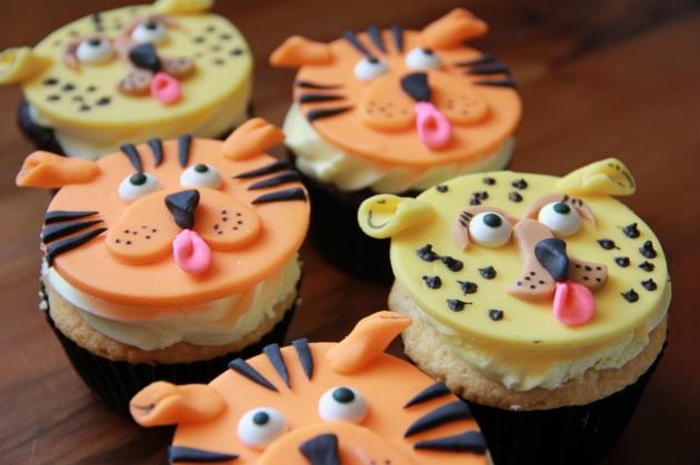 Cheetahs & Tigers