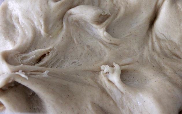Apple Challah With Raisins -- dough